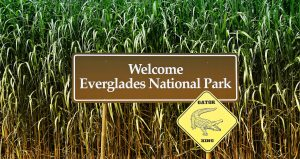Welcome sign for Everglades.