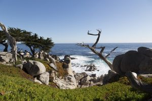 A beach in Monterey, California.