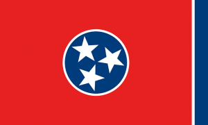 Tennessee flag - As soon as you decide that moving to Tennessee is the right choice, all you have to do is to pick one of the best neighborhoods in Memphis, TN.